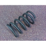 Coil Spring Rear (Fiat 850 Spider, Coupe) - U8